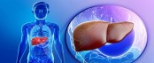 New research shows fasting helps fight fatty liver disease